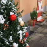 Weihnachtsbaum2018_08