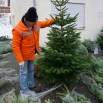 Weihnachtsbaum2018_17