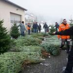 Weihnachtsbaum2018_18