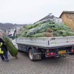 weihnachtsbaum2015_001