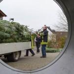 weihnachtsbaum2015_003
