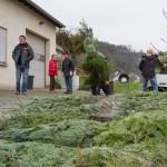 weihnachtsbaum2015_007