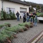 weihnachtsbaum2015_008