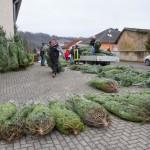 weihnachtsbaum2015_009
