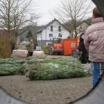 weihnachtsbaum2015_010