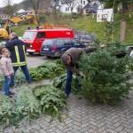 weihnachtsbaum2015_015