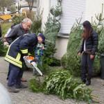 weihnachtsbaum2015_017