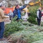 weihnachtsbaum2015_018
