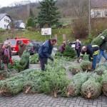 weihnachtsbaum2015_019