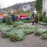 weihnachtsbaum2015_021