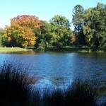 Herbstbäume am kalten Herzen