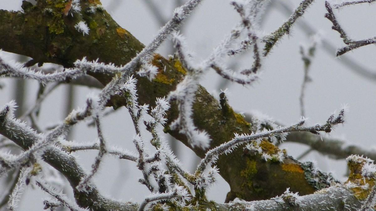 j winterliche dekorationen (4)