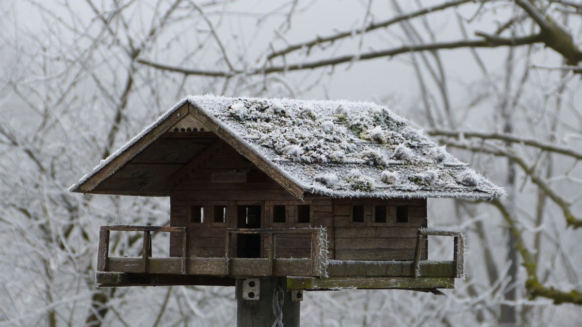 j winterliche dekorationen (5)