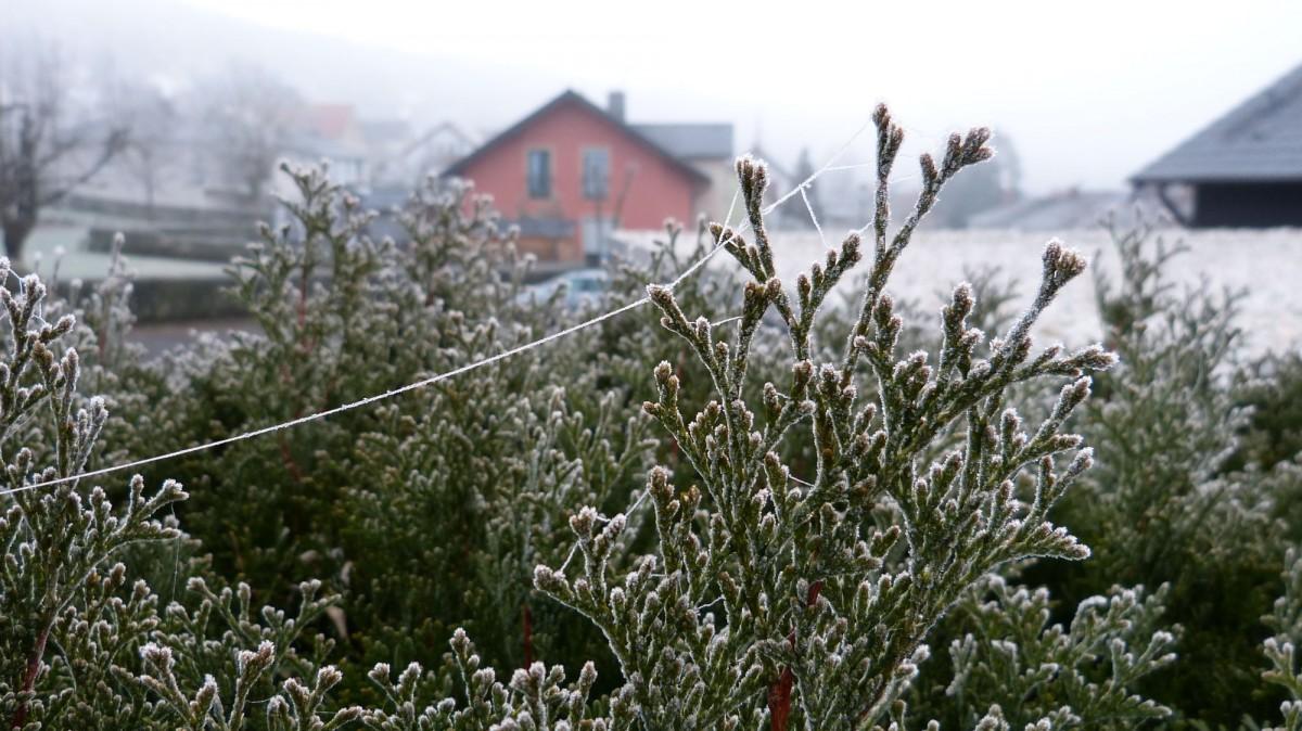 j winterliche dekorationen (7)