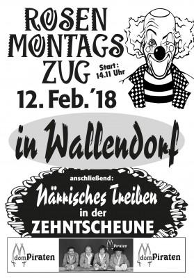 Rosenmontagszug in Wallendorf 2018